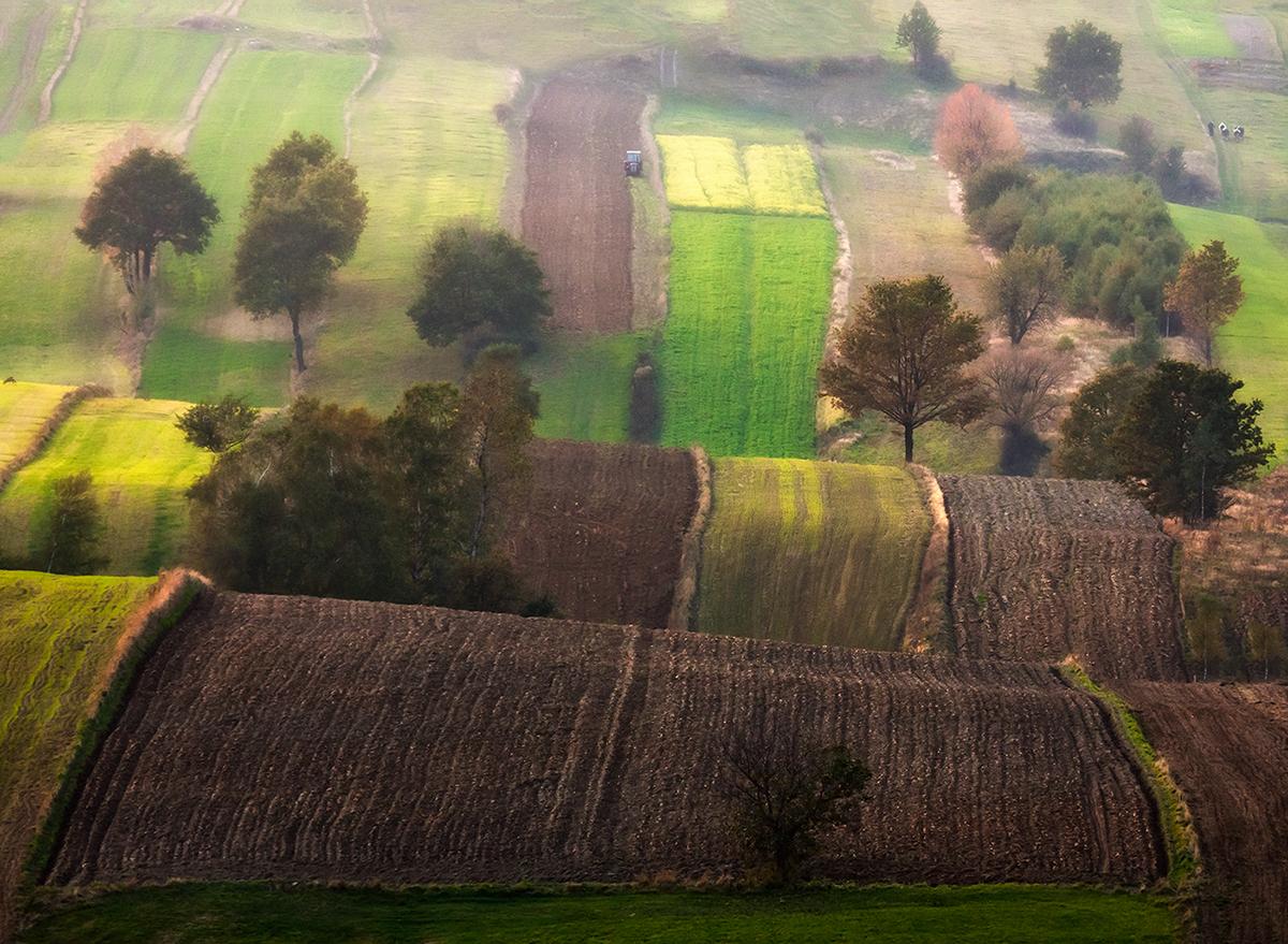 Travel Nature poland jura Landscape field village light green