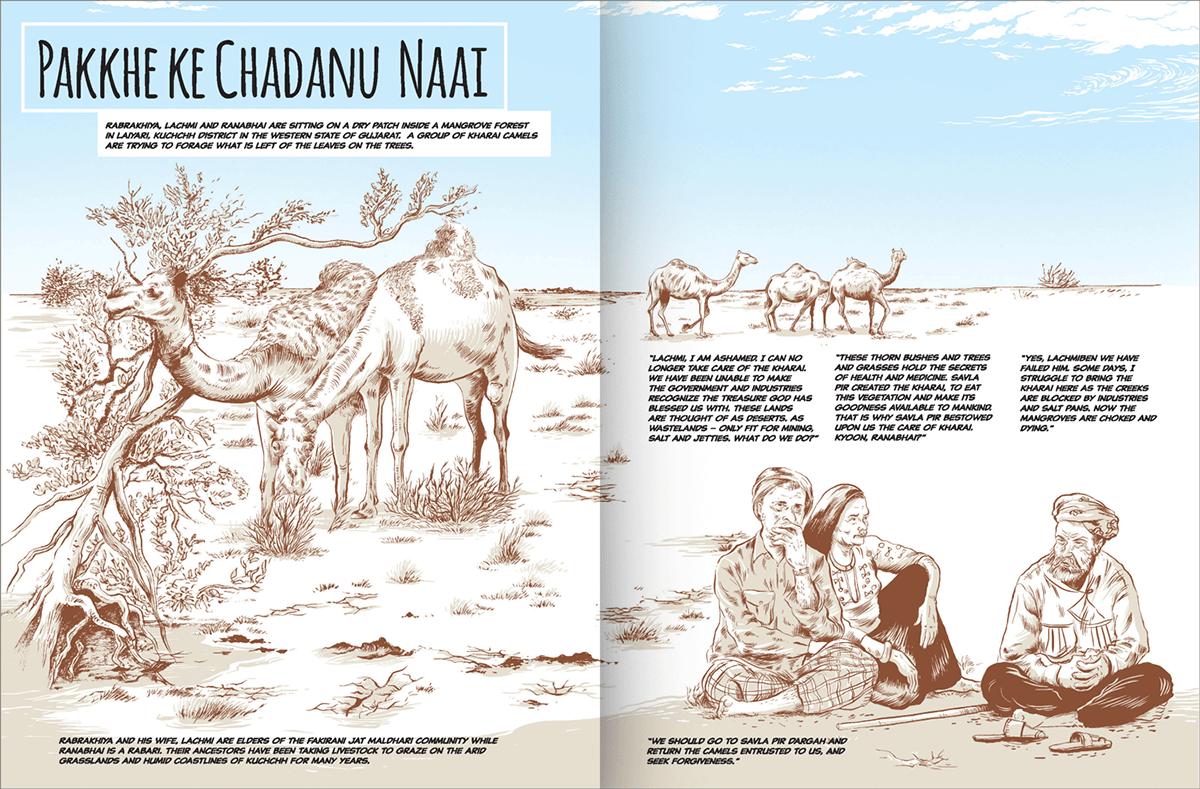 book Cattle changpa Exhibition  gaddi India kurumá maldhari pastoral Pastoralism