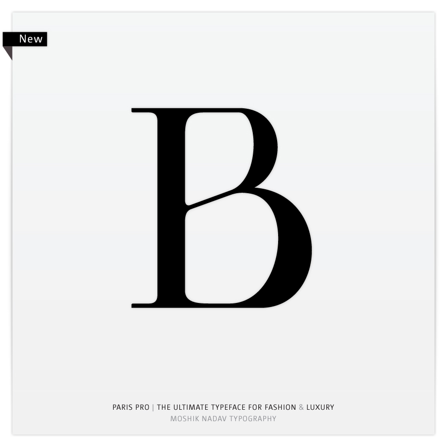 Paris type logo font fonts Ligatures sexy typo israel New York ampersand Fashion  luxury nyc Typeface