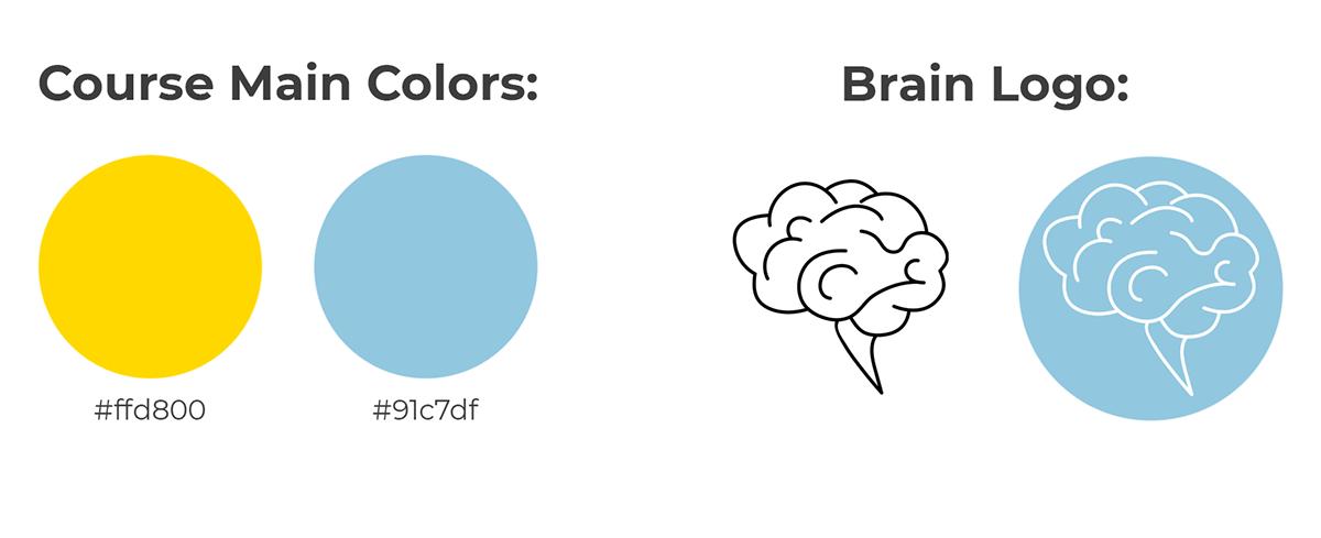 brand identity branding  course visual identity graphic recording hand drawn ILLUSTRATION  marketing   mind map Visual Notes