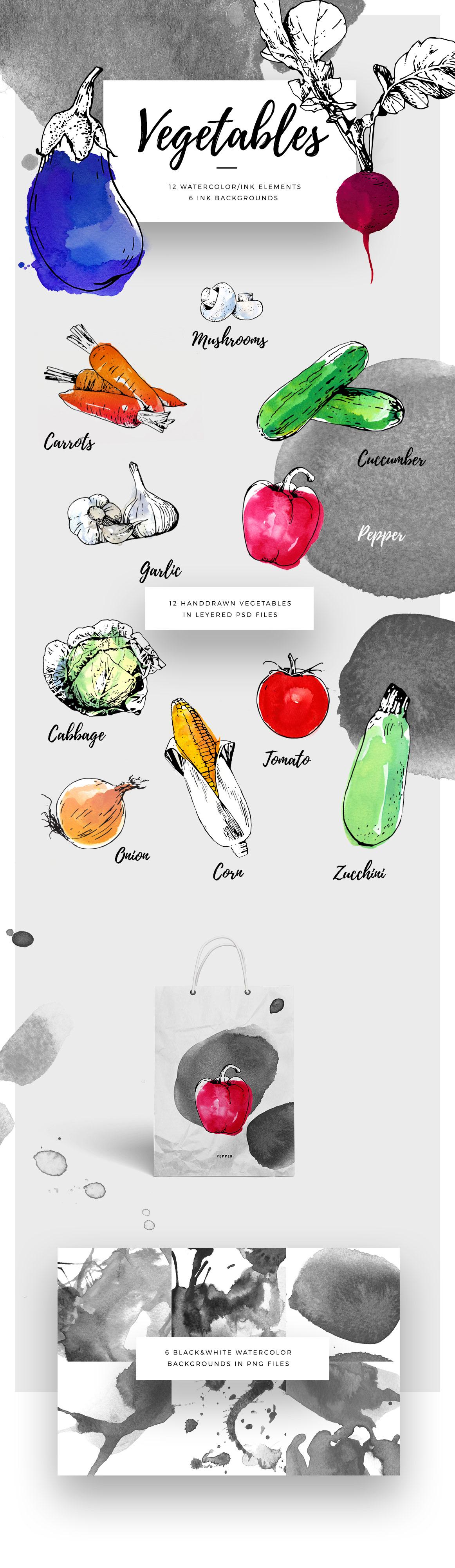 ink vegetables vegetable graphic watercolor vector