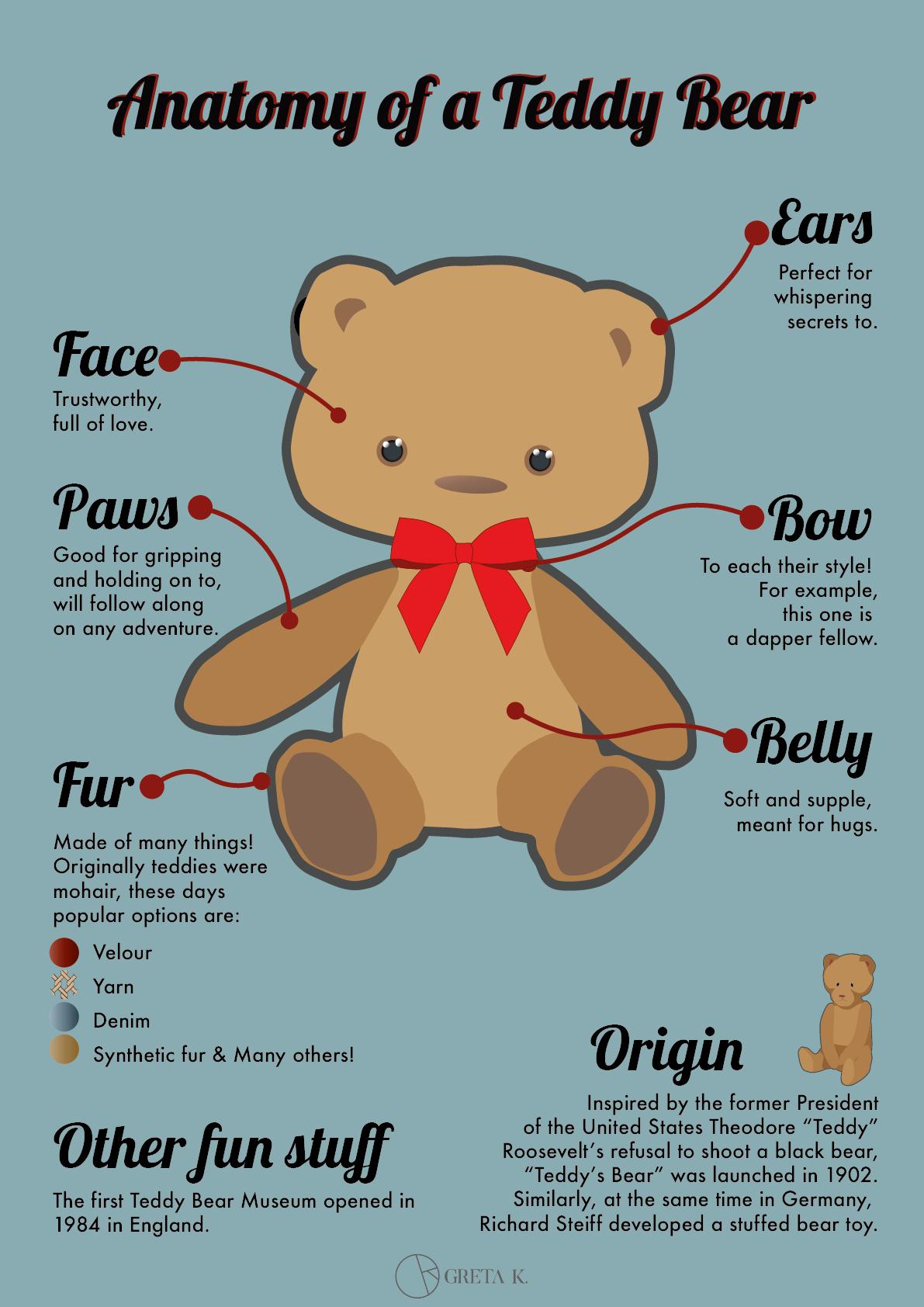 Anatomy Of A Teddy Bear On Behance