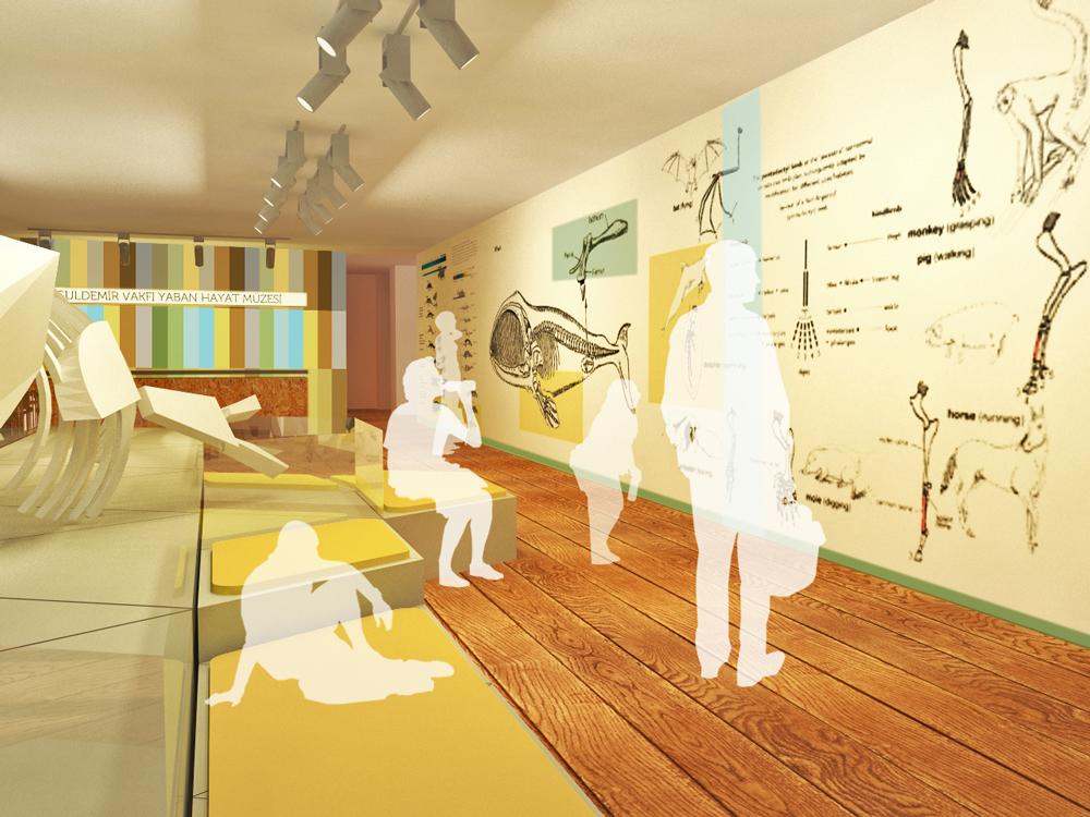 itu Wild Life Museum Exhibition  museum natural history