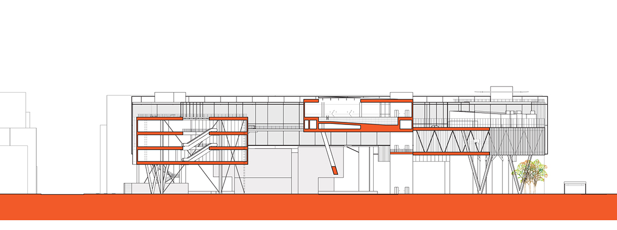 Architecture thesis project synopsis
