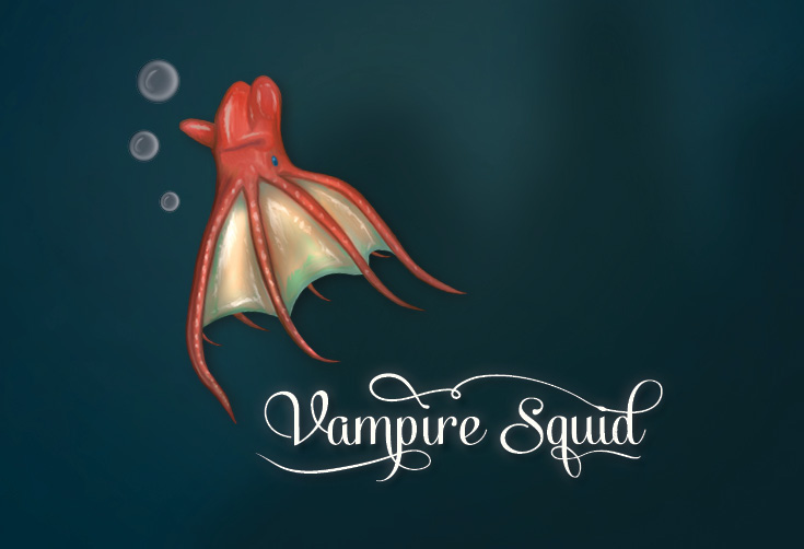 Vampire Squid Diagram Search For Wiring Diagrams