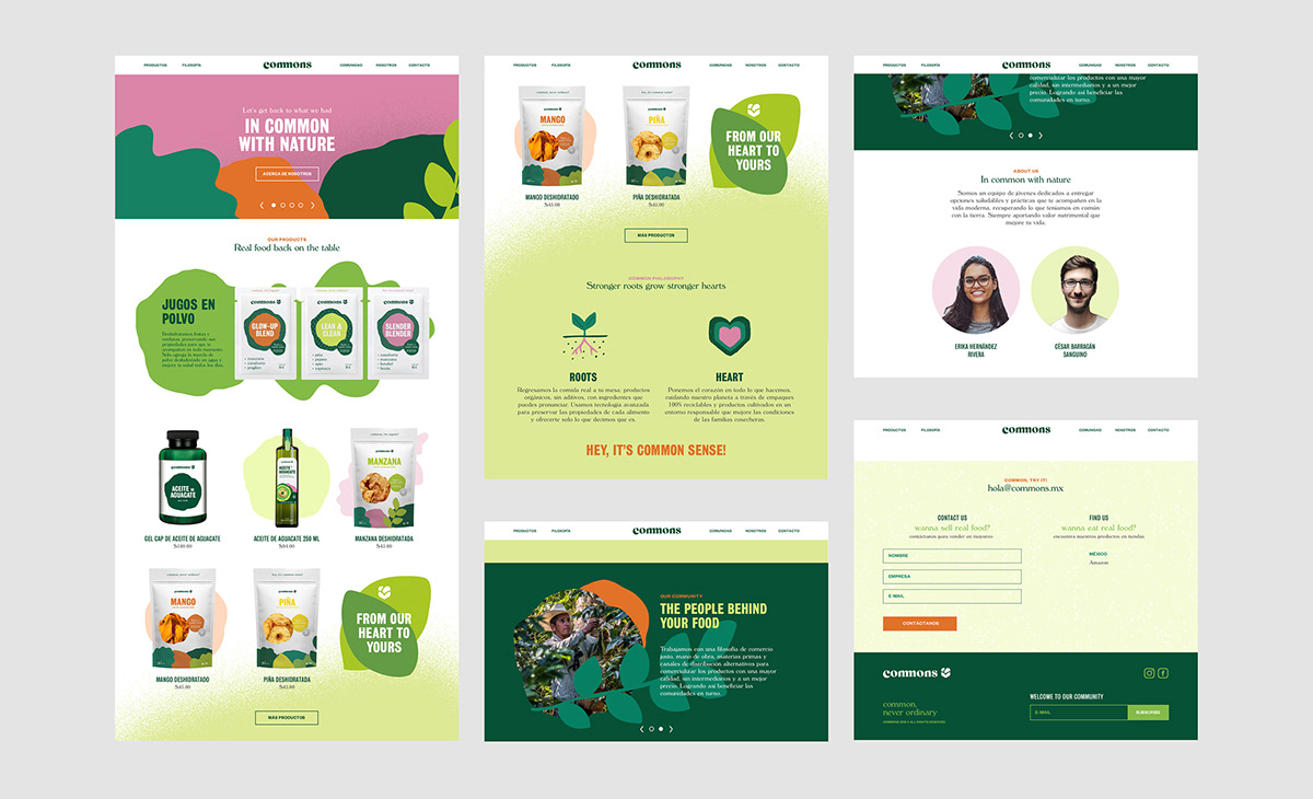 firmalt monterrey mexico Product Branding avocado oil food and drinks Food Packaging organic healthy