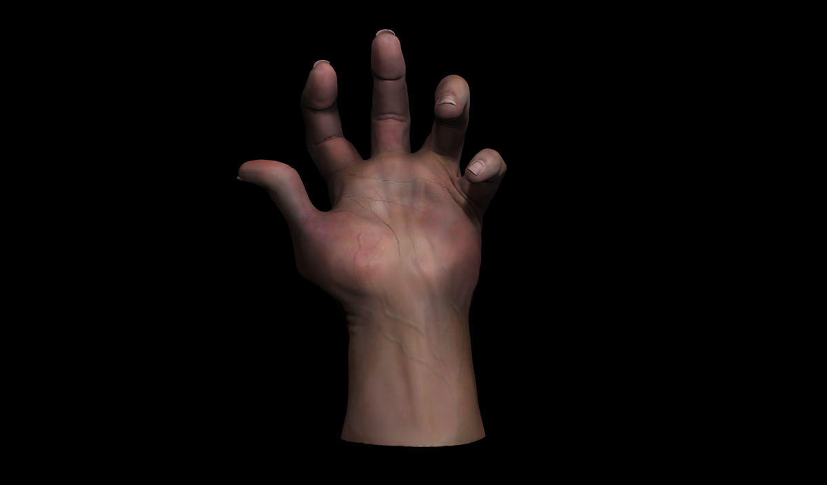3D Zbrush Hand on Pantone Canvas Gallery