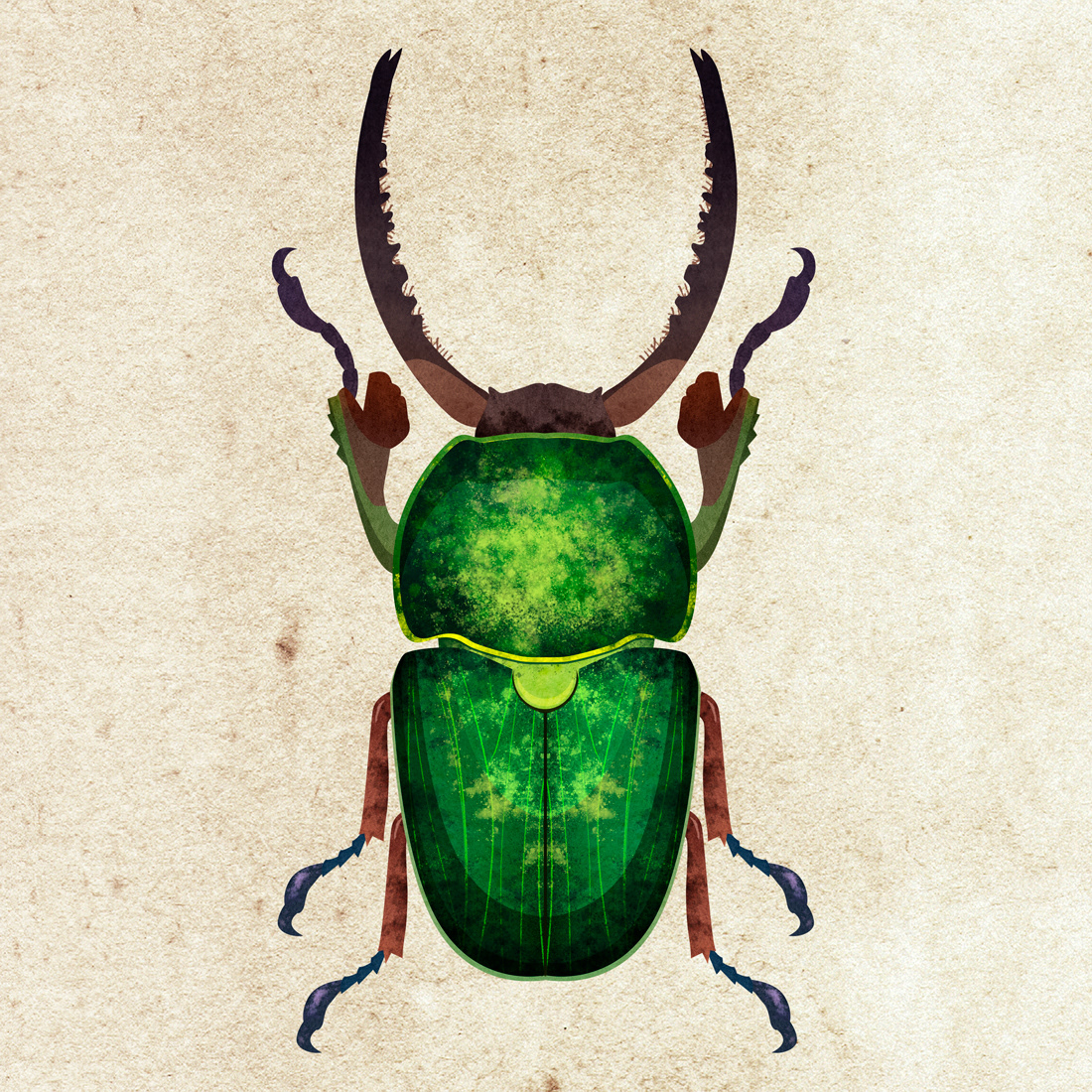 beetles watercolor print textile insect Nature KIND
