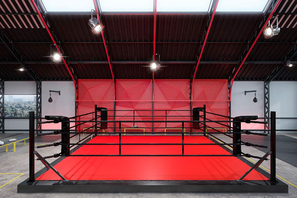 Design of a gym for boxing and MMA by ZOOI on Behance