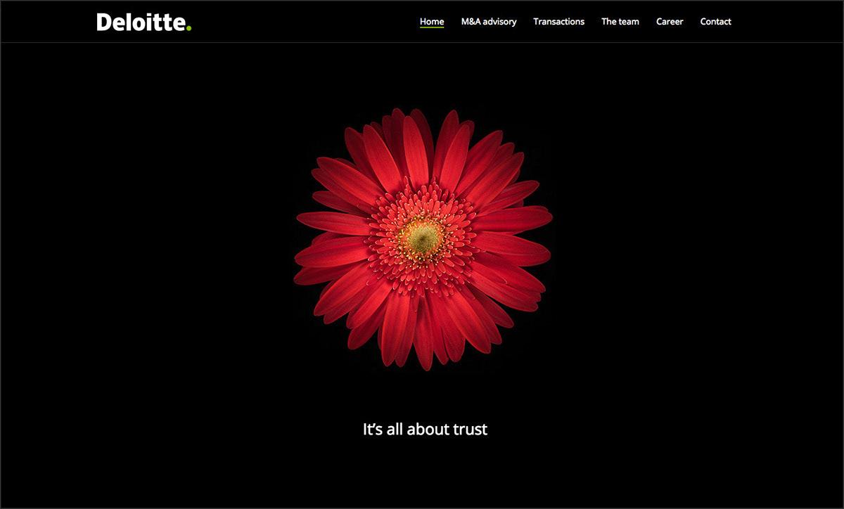 deloitte graphic design  UI ux Webdesign