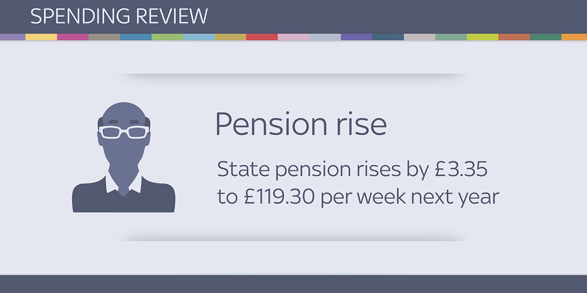 Adobe Portfolio information design Icon infographics Data spending review economics pie charts