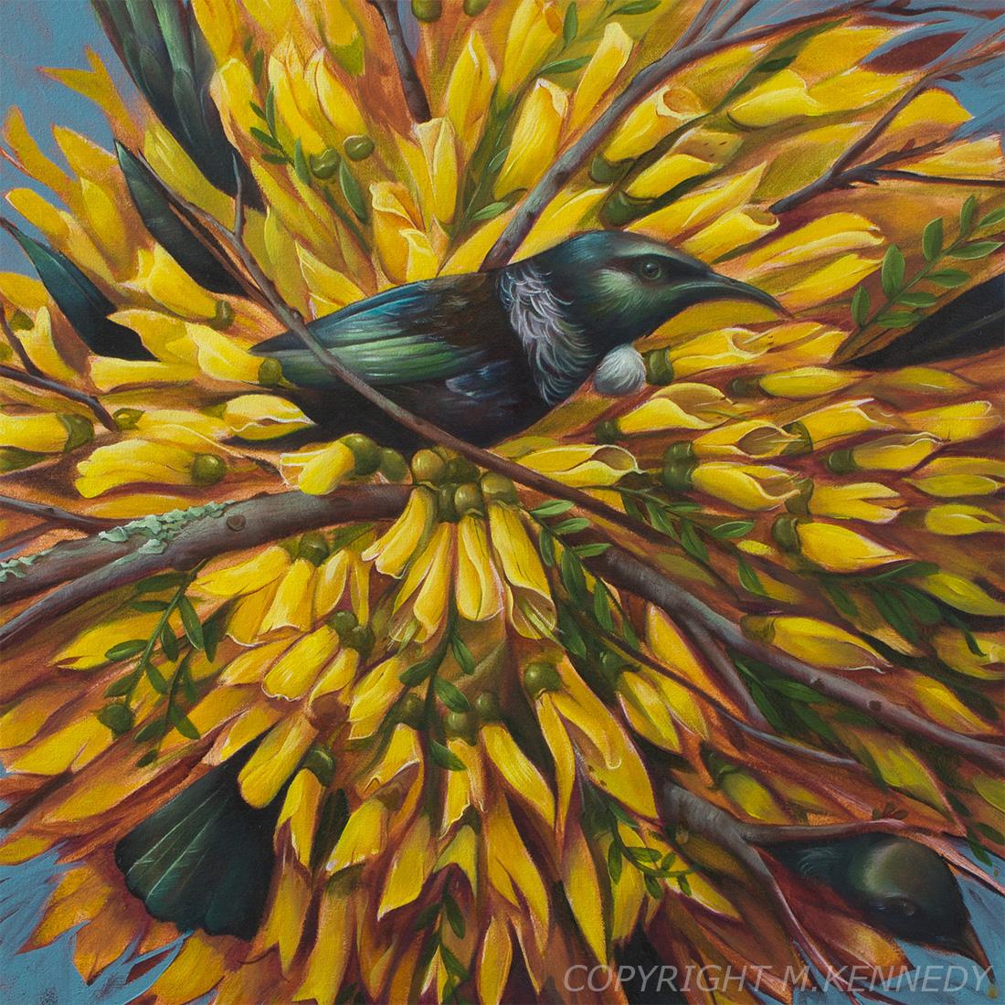 Tui kowhai New Zealand Nature Oil Painting painting   traditional pop surrealsim ILLUSTRATION