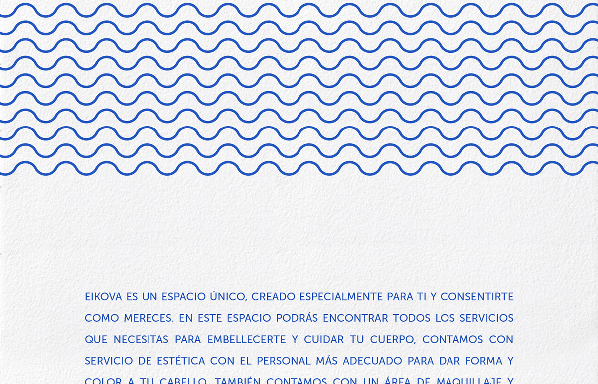 beauty Spa salon hairstyle Hairstylist venus seashell shell brands logo logos art mexico Guadalajara