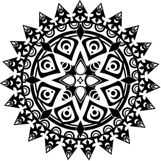 Image result for radial symmetry