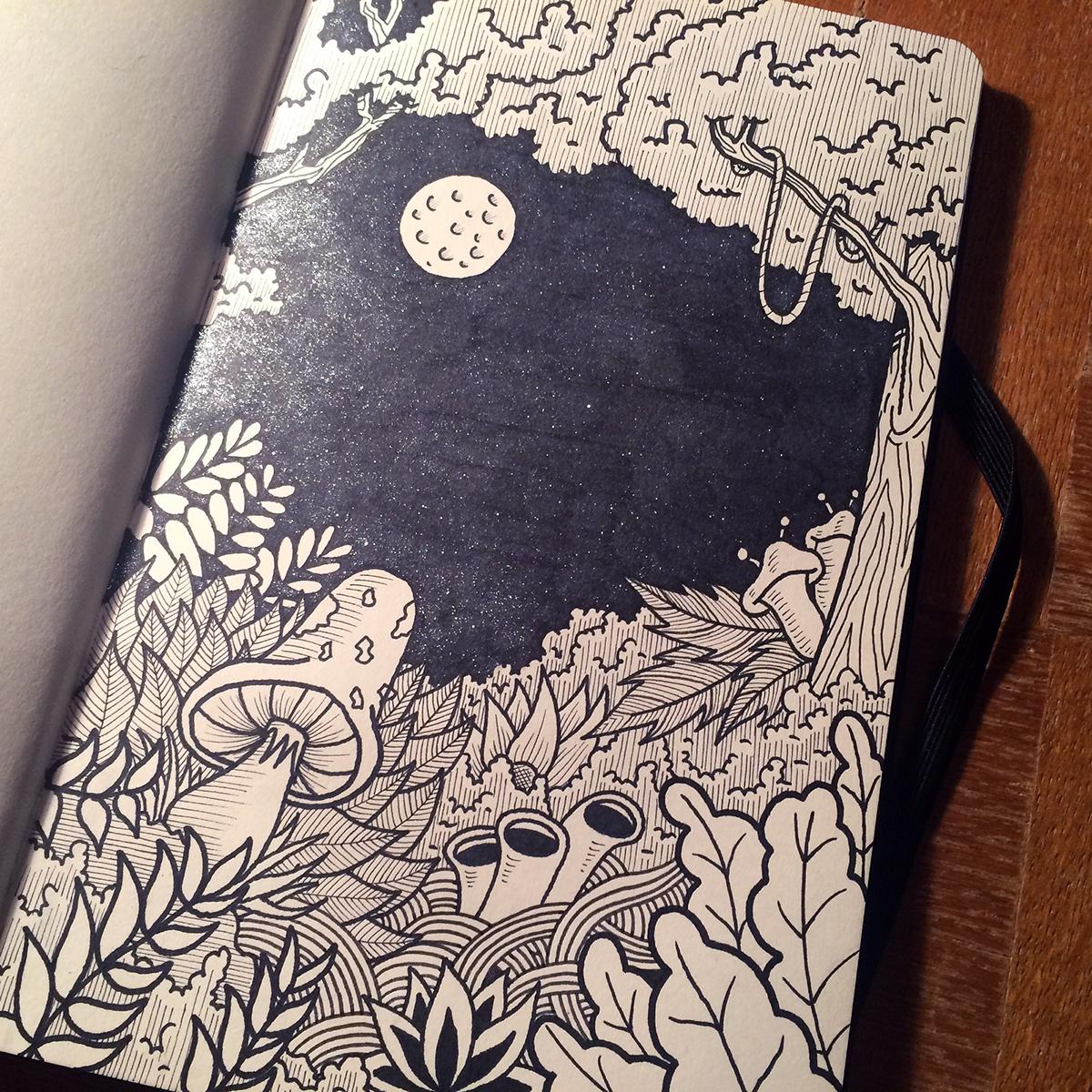 coloring doodle Drawing  Nature mushroom sparkles Magical forrest