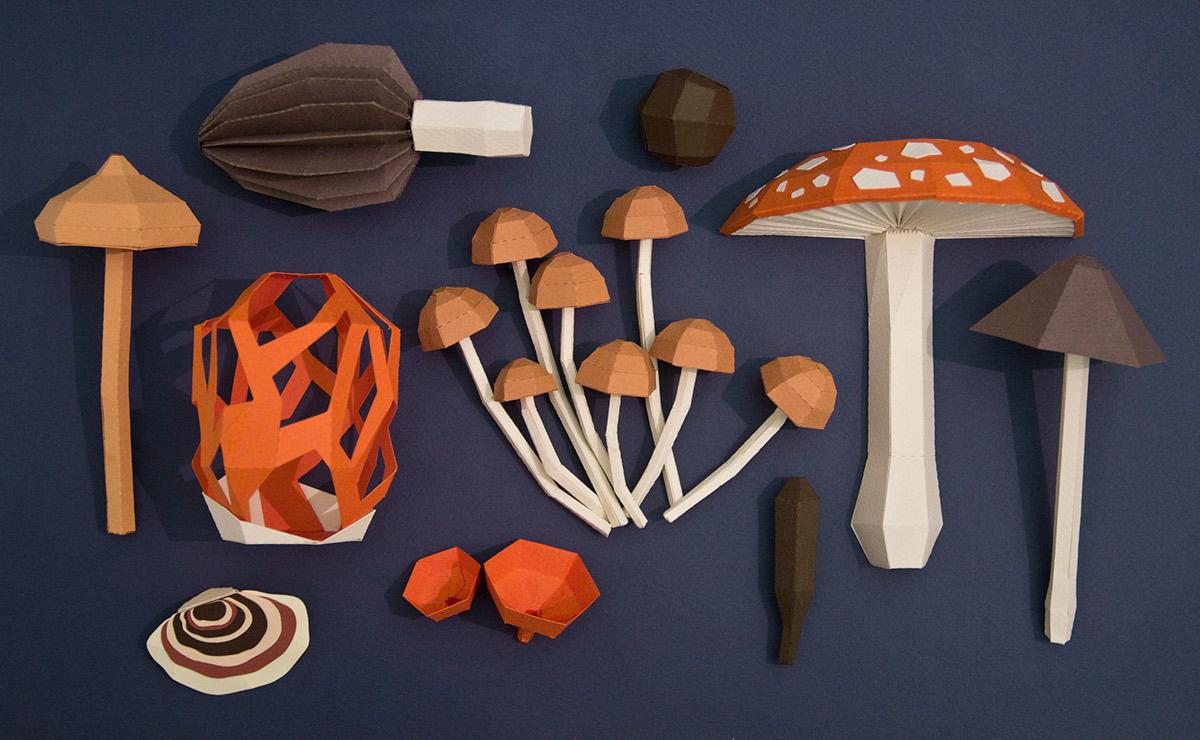 Fungi paper papercraft hongos mushroom amanita muscaria morchella setas lowpoly