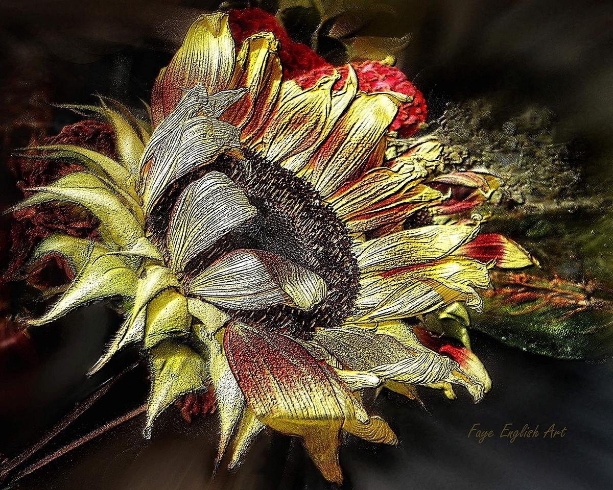Sunflower Bounty on Behance