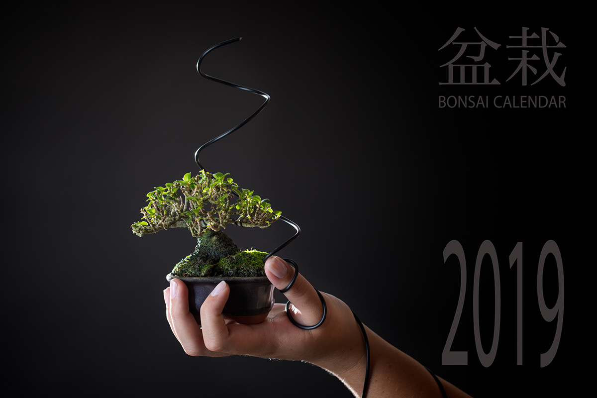 Bonsai Calendar 2019 Bonsai Addicts Club On Behance