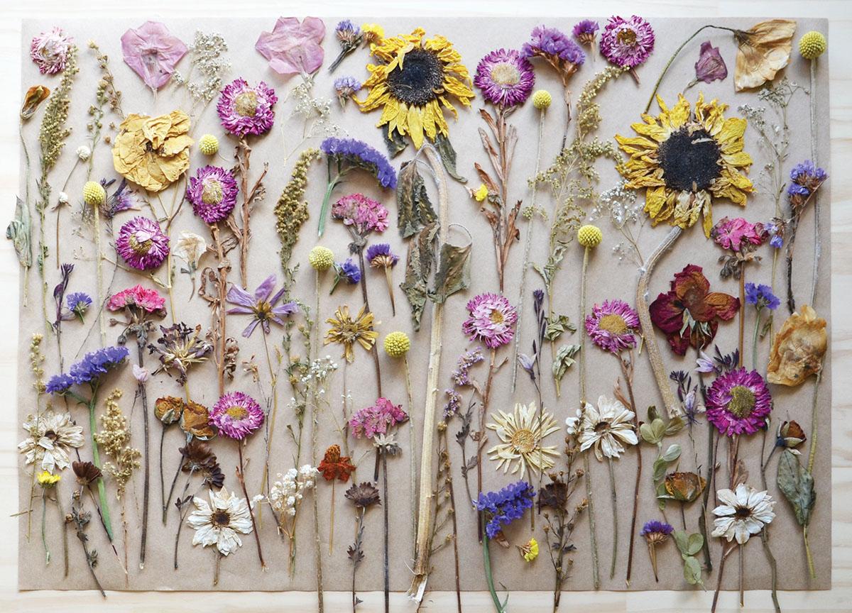 wallflower florist business card design on behance