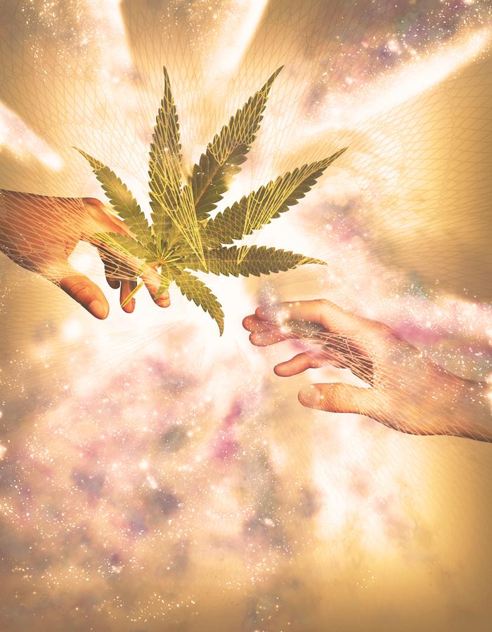 Adobe Portfolio Dope Magazine  cannabis seattle Portland denver san francisco Los Angeles San Diego magazine weed #420 #710 MMJ medical marijuana