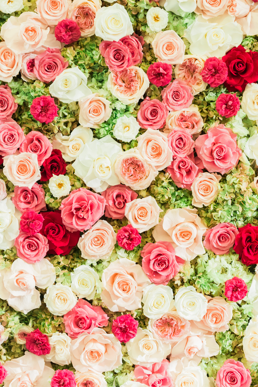 Stacey carlton everlasting flower wall 2015 everlasting flower wall 2015 izmirmasajfo