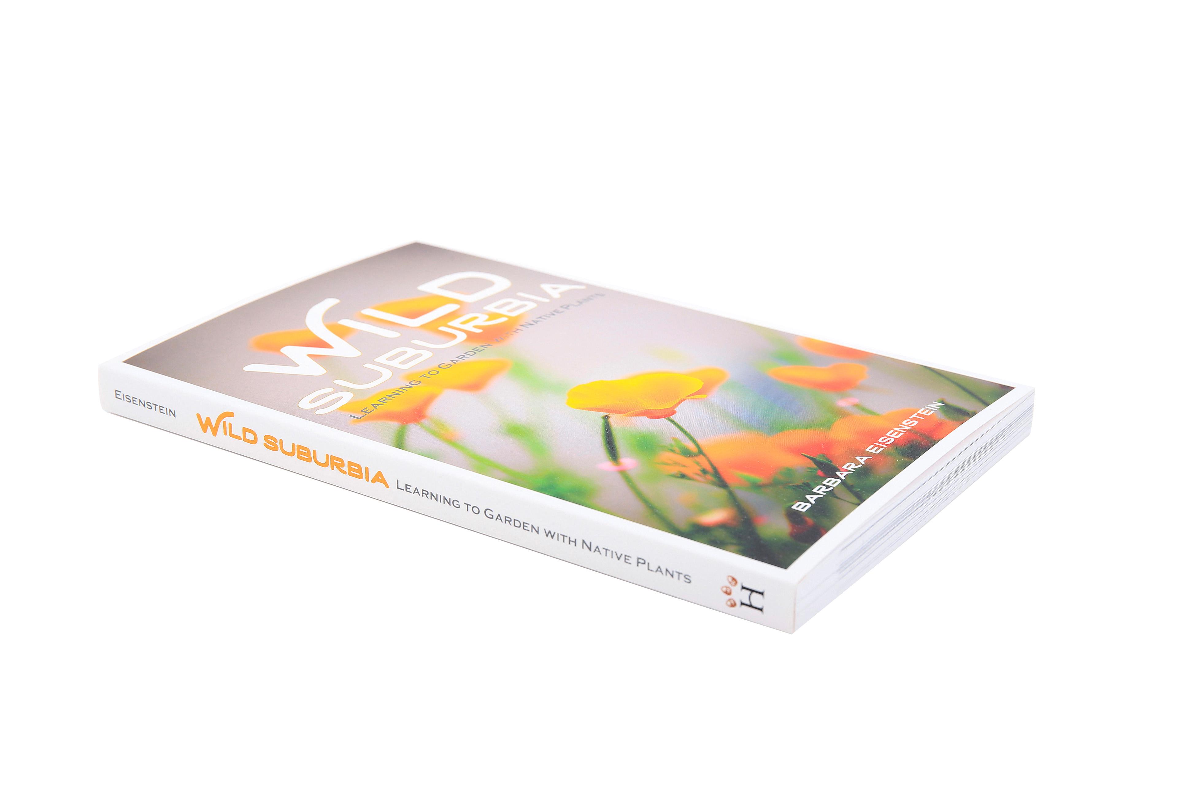 Ashley Ingram - Book Cover Design