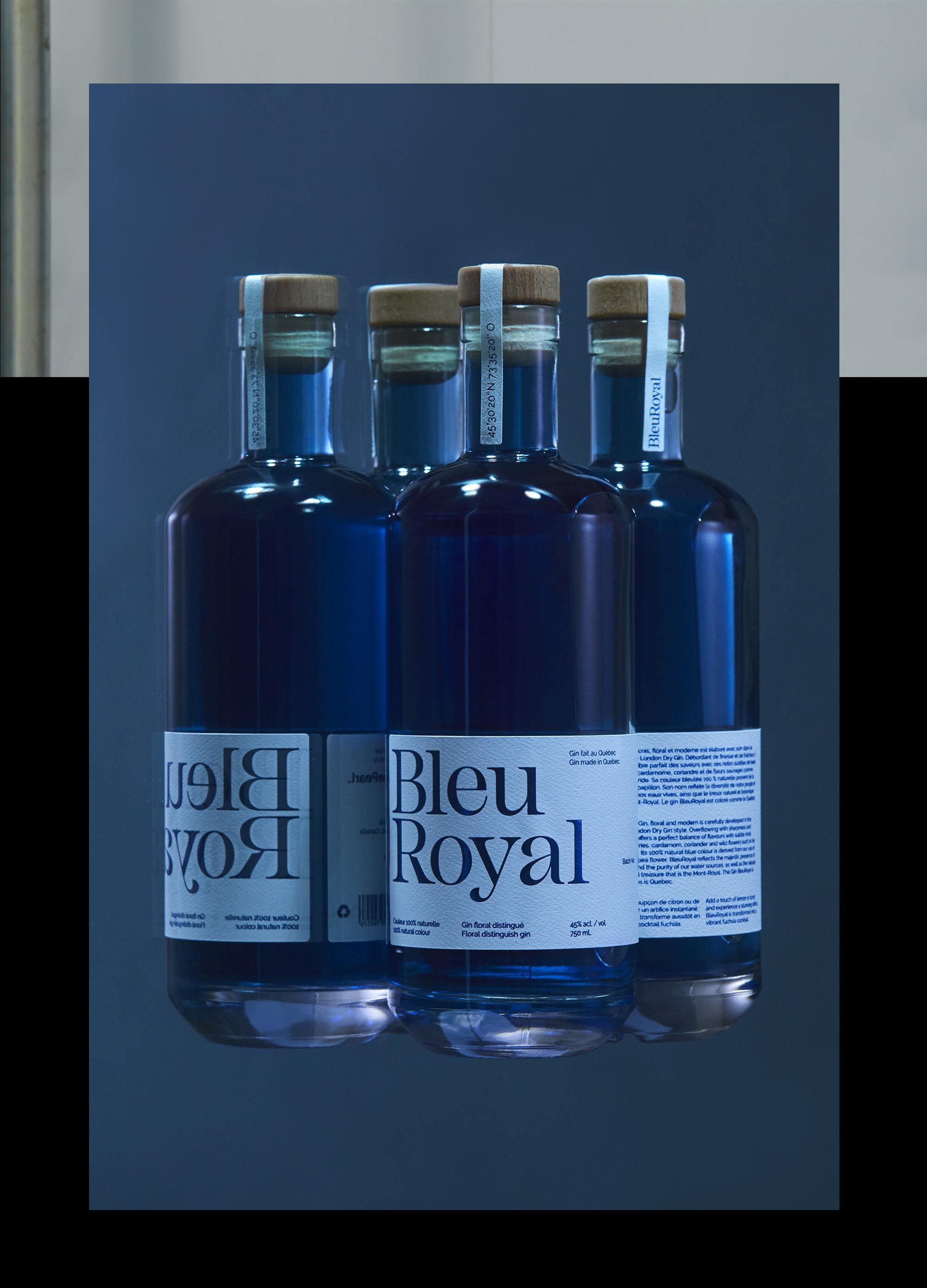 Bleuroyal On Behance
