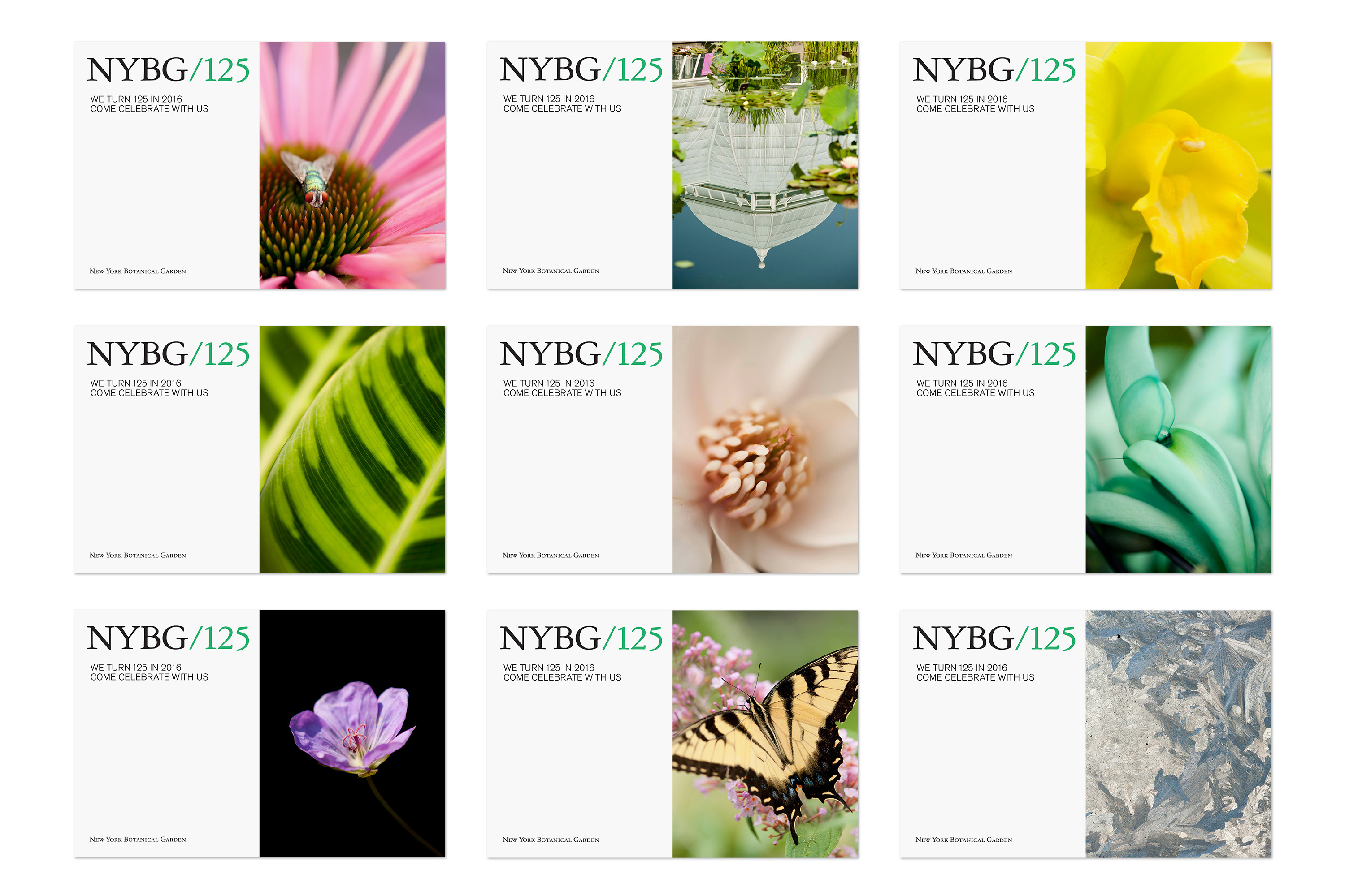 New York Botanical Garden, Identity System On Behance