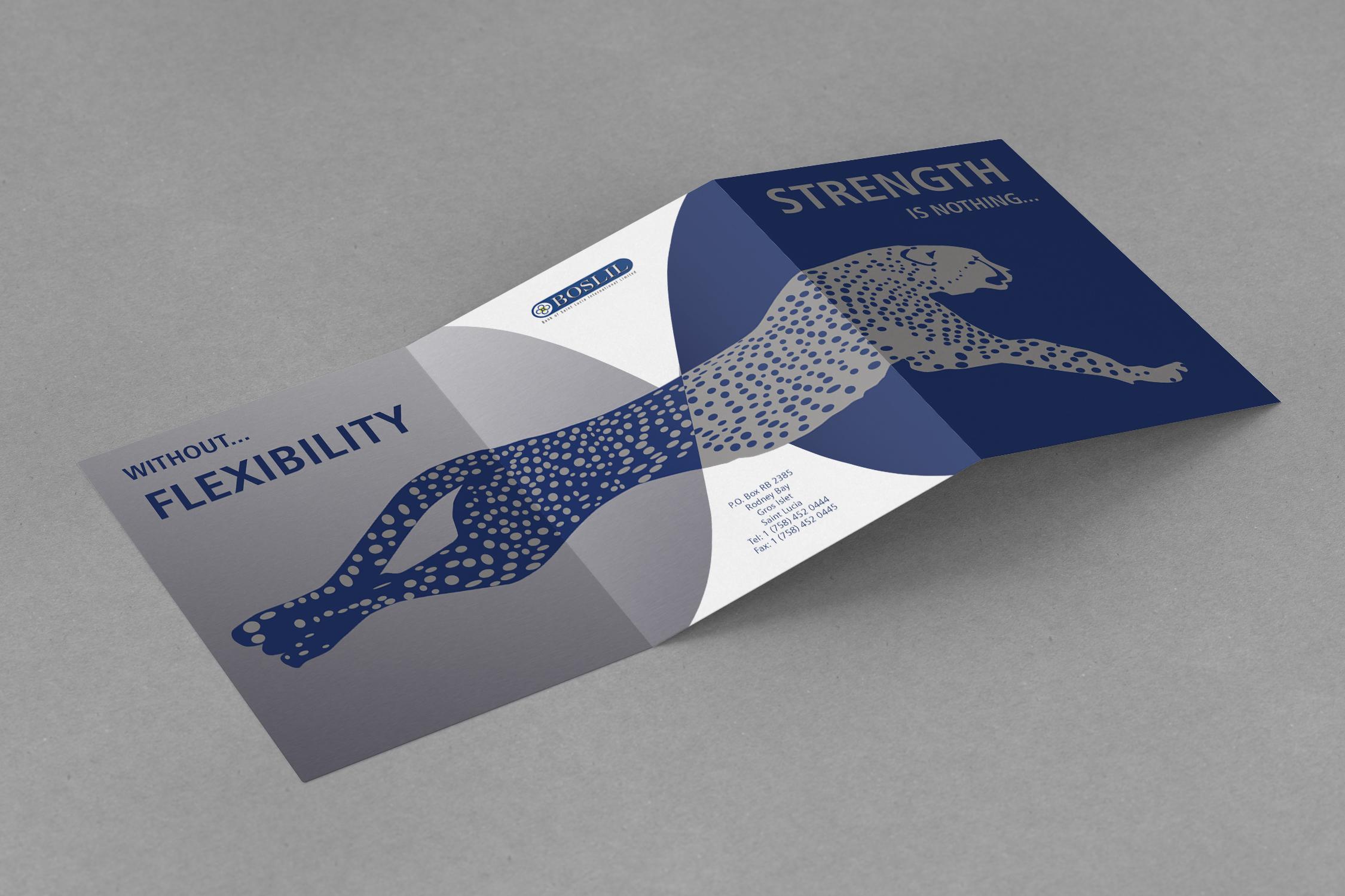 NSJ Creative - Freelance graphic design and illustration - Leaflet ...