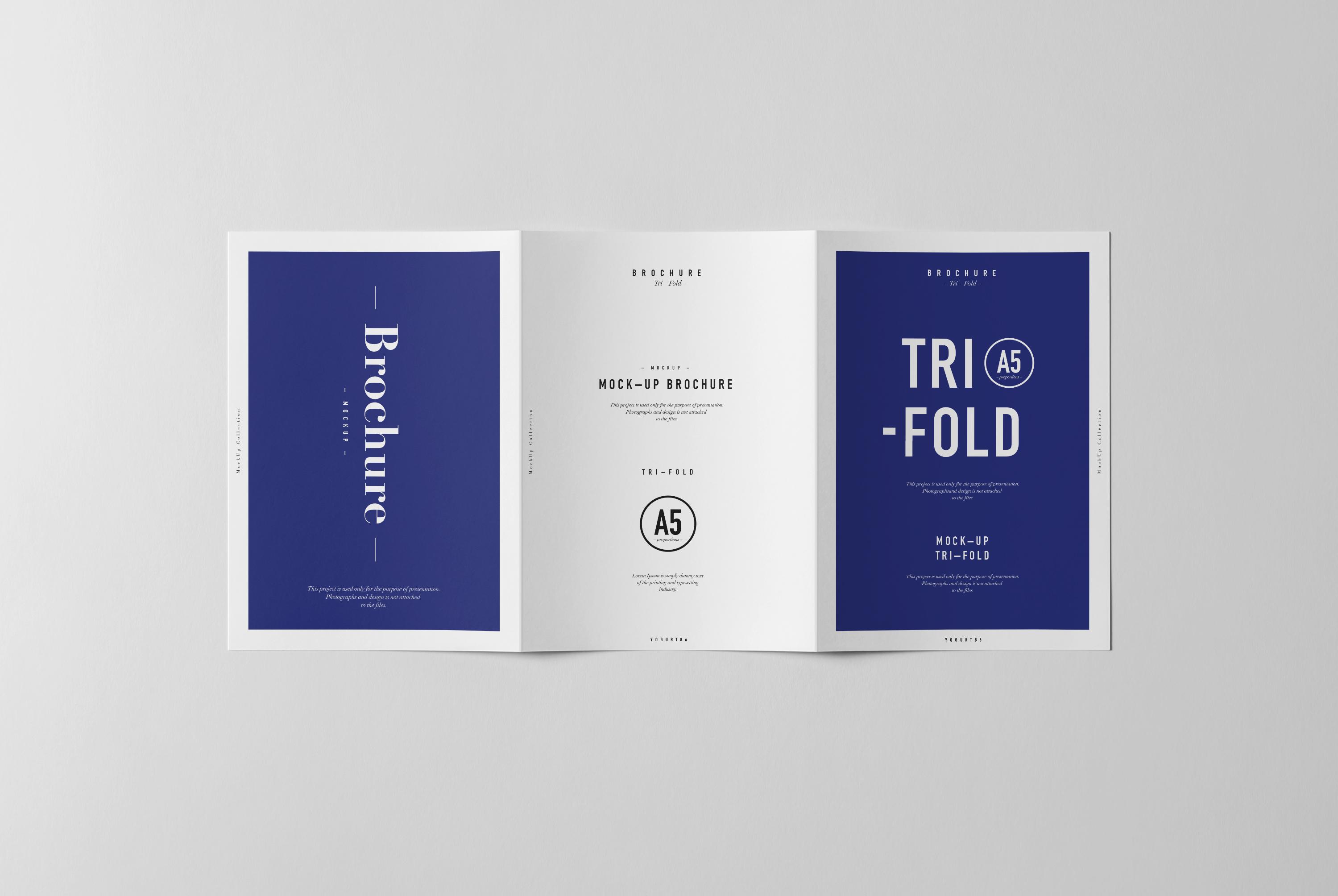 tri fold a5 brochure mock up on behance