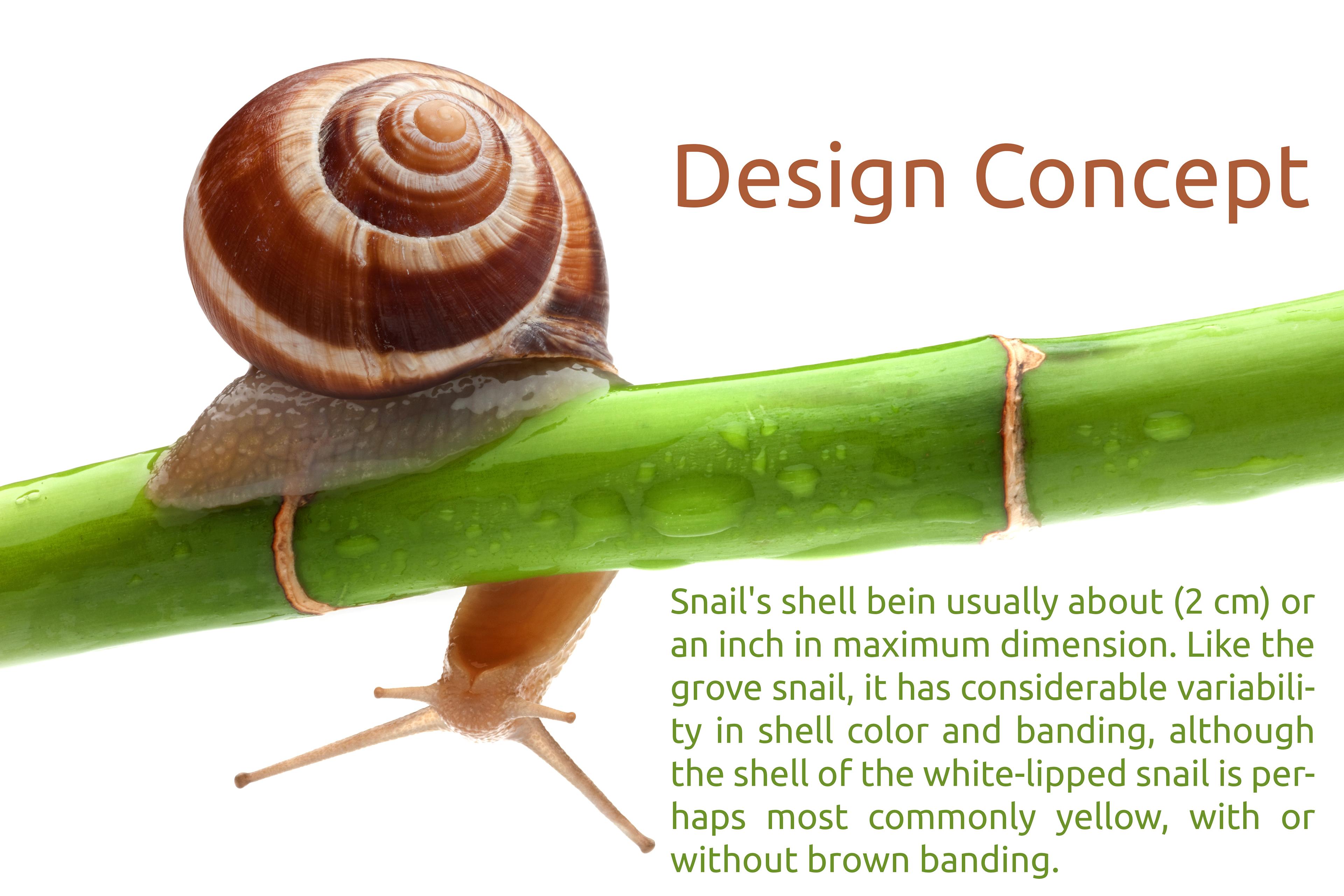 snail kiosk on behance