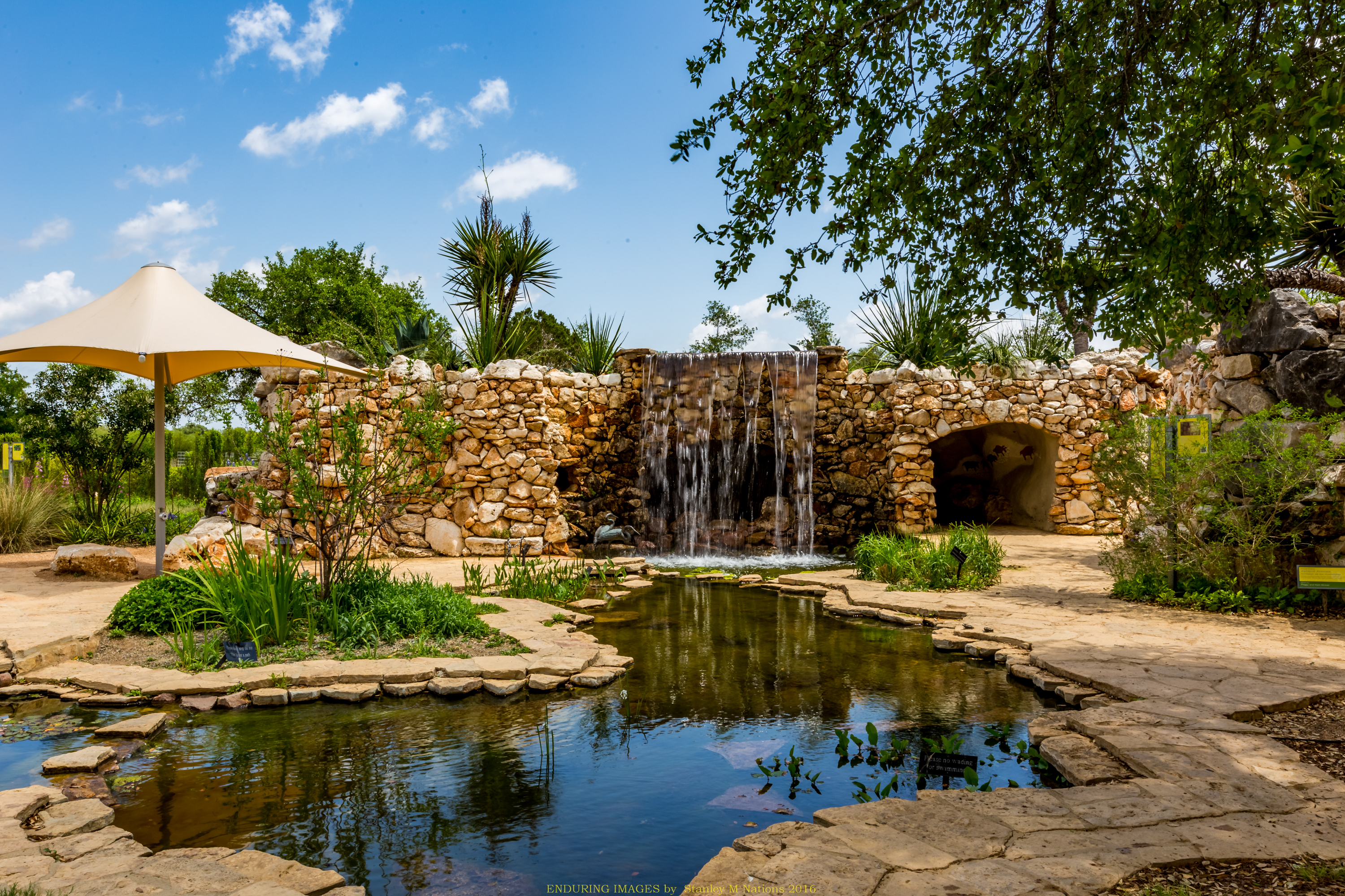 Enduring Images by Stanley Nations - Lady Bird Johnson Wildflower Center