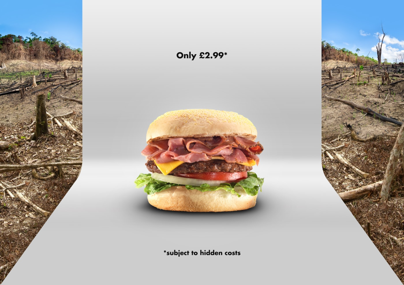 Burger in front of infinity wall, deforestation behind