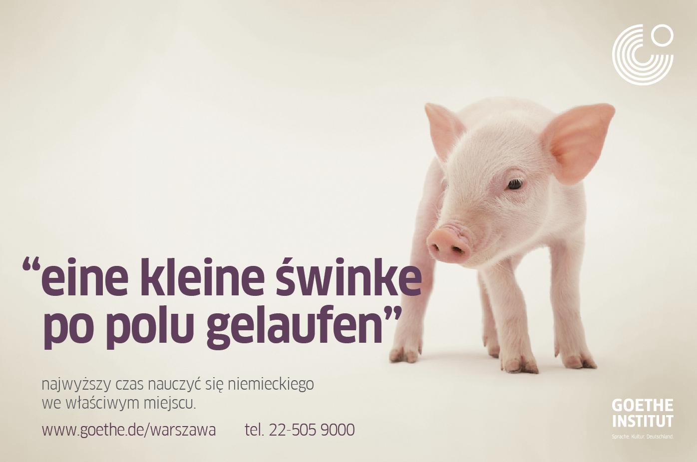 Eine kleine Swinke – Goethe-Institute campaign   leniva