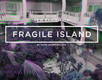 Fragile Island_flayers