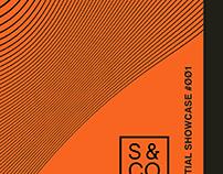 Cymatic Posters/Branding