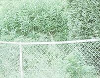 summer 02