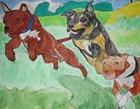 Jumping pit bulls