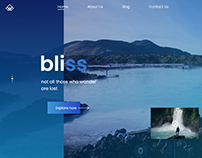 bliss landing page concept