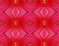 Pattern, fuchsia and red base