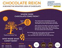 Amity Global School Noida   Chocolate Info-graphic