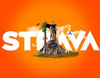 On the road - STRAVA
