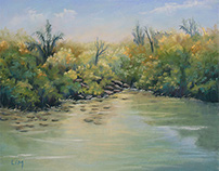 Mangrove Mauricienne