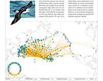 Migratory Bird Atlas