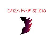 Logo design freelance work