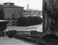DI[sp]LUVIO: Firenze e il suo fiume