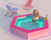 Quarantine hippo in pool