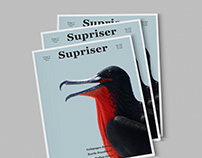 The Supriser