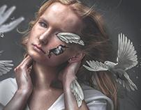 Phoenix III - Reflection
