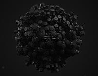 Project Blackflowers